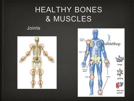 HEALTHY BONES & MUSCLES Joints. Joints Types of joints The joint is the point where two or more bones meet. There are three main types of joints; Fibrous.