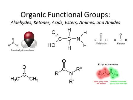 Organic Functional Groups: Aldehydes, Ketones, Acids, Esters, Amines, and Amides.