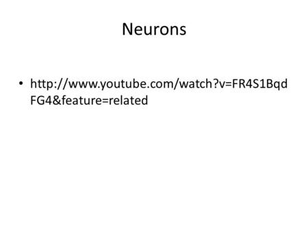 Neurons  FG4&feature=related.
