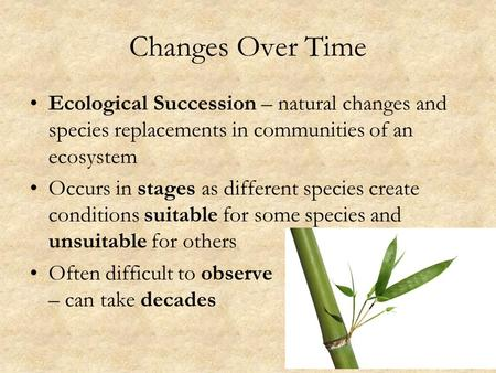 Changes Over Time Ecological Succession – natural changes and species replacements in communities of an ecosystem Occurs in stages as different species.