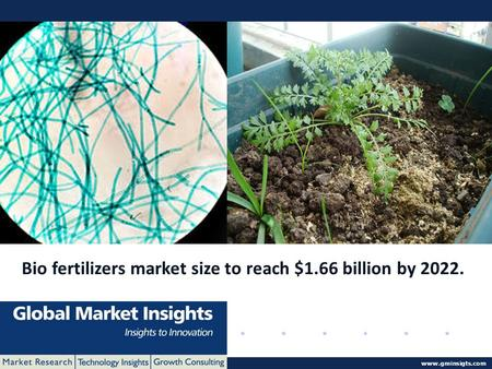 © 2016 Global Market Insights. All Rights Reserved www.gminsigts.com Bio fertilizers market size to reach $1.66 billion by 2022.