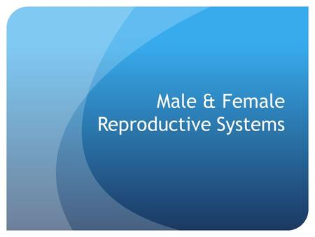 Male & Female Reproductive Systems. Female Reproductive System Know the location of the following items: *Egg *Ovary *Fallopian Tube *Uterus *Endometrium.