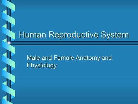 Human Reproductive System Male and Female Anatomy and Physiology.