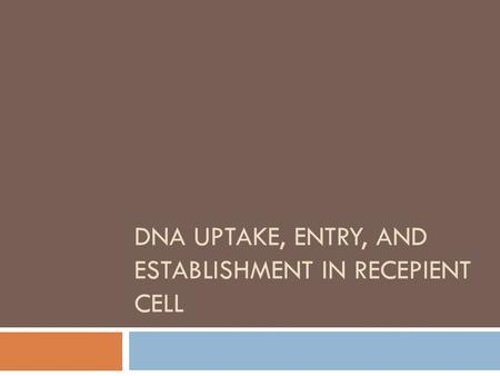DNA UPTAKE, ENTRY, AND ESTABLISHMENT IN RECEPIENT CELL.