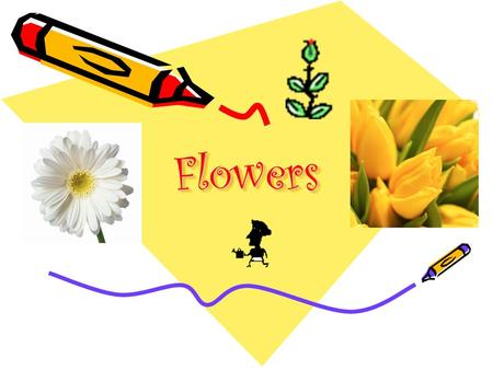 FlowersFlowers. Why are flowers important? Kaupapa: To label and describe the main parts of a flower To explain why plants produce flowers.