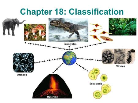 Chapter 18: Classification. Section 18-1: Finding Order in Diversity.