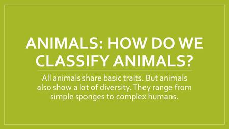 ANIMALS: HOW DO WE CLASSIFY ANIMALS? All animals share basic traits. But animals also show a lot of diversity. They range from simple sponges to complex.