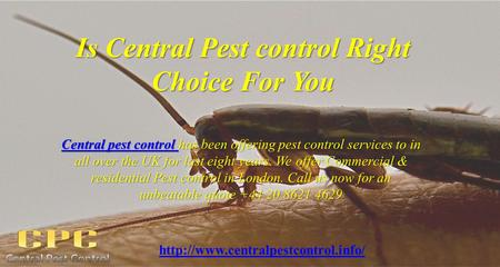 Is Central Pest control Right Choice For You Central pest control Central pest control has been offering pest control services to in all over the UK for.