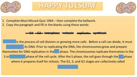 1. Complete Most Missed Quiz: DNA – then complete the bellwork. 2. Copy the paragraph and fill in the blanks using these words: G1 G2 interphase mitosis.
