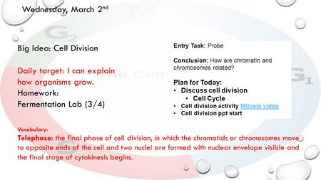 Wednesday, March 2 nd Big Idea: Cell Division Daily target: I can explain how organisms grow. Homework: Fermentation Lab (3/4) Entry Task: Probe Conclusion: