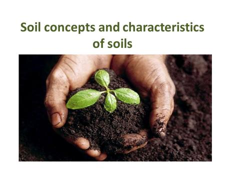Soil concepts and characteristics of soils. INTRODUCTION Soil - covers most of the earth's land surface Soil - natural medium for the growth of plants.