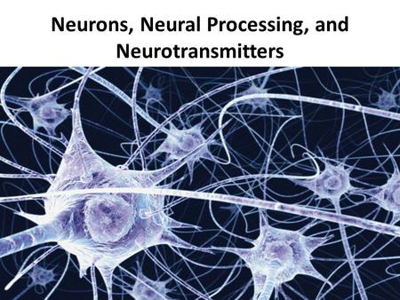 Neurons, Neural Processing, and Neurotransmitters.