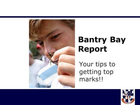 Bantry Bay Report Your tips to getting top marks!!