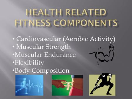Cardiovascular (Aerobic Activity) Muscular Strength Muscular Endurance Flexibility Body Composition.