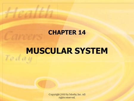 Copyright 2003 by Mosby, Inc. All rights reserved. CHAPTER 14 MUSCULAR SYSTEM.