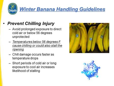 Prevent Chilling Injury –Avoid prolonged exposure to direct cold air or below 56 degrees unprotected –Temperatures below 56 degrees F cause chilling or.