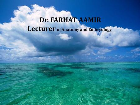 Dr. FARHAT AAMIR Lecturer of Anatomy and Embryology