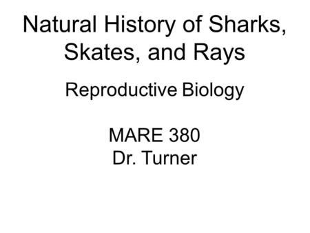 Natural History of Sharks, Skates, and Rays Reproductive Biology MARE 380 Dr. Turner.