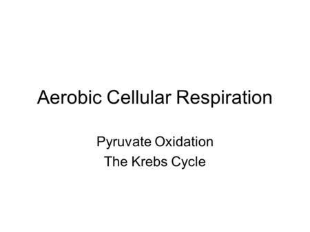 Aerobic Cellular Respiration Pyruvate Oxidation The Krebs Cycle.