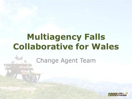 Multiagency Falls Collaborative for Wales Change Agent Team.