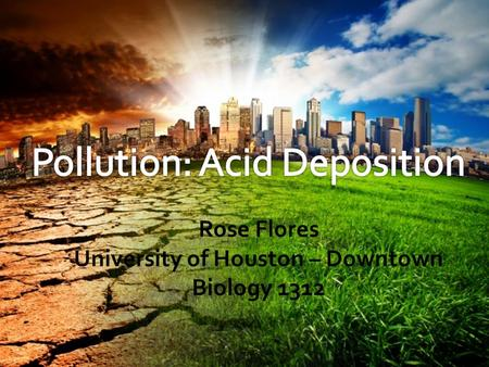 Rose Flores University of Houston – Downtown Biology 1312.