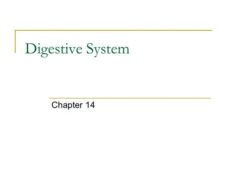 Digestive System Chapter 14.  e/health-and-human-body/human- body/digestive-system-article.html