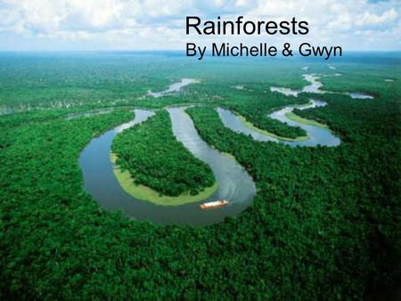 Rainforests By Michelle & Gwyn .What is a Rainforest? Rainforests are home to many plants and animals, such as monkeys, sloths, snakes, jaguars, tree.
