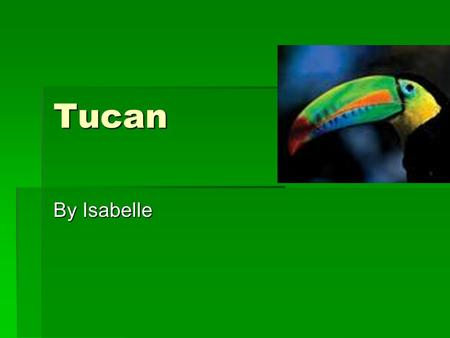 Tucan By Isabelle. Tucan infant hatches from an egg.