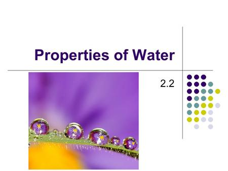 Properties of Water 2.2 Why Water? -Water regulates the temperature of plants and transports nutrients through them.