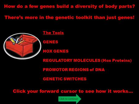 Click to continue How do a few genes build a diversity of body parts? There's more in the genetic toolkit than just genes! Click your forward cursor to.