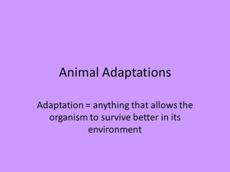 Animal Adaptations Adaptation = anything that allows the organism to survive better in its environment.