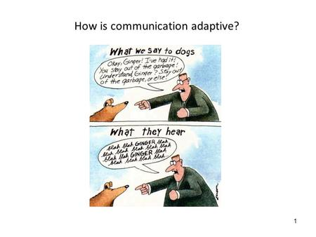 1 How is communication adaptive? 2 6/4/08: Animal Communication: Adaptationist perspective of communication Lecture objectives: 1.Be able to tell if.