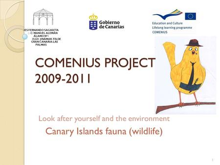 COMENIUS PROJECT 2009-2011 Look after yourself and the environment Canary Islands fauna (wildlife) IES FERNANDO SAGASETA C/ MANUEL ALEMÁN ÁLAMO Nº1 35220.