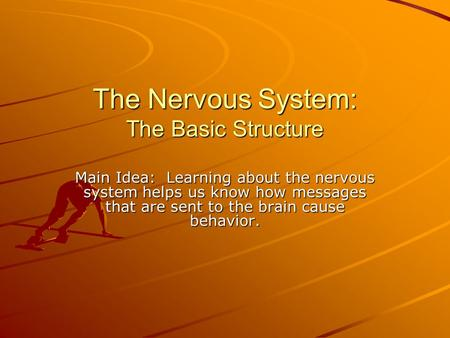 The Nervous System: The Basic Structure Main Idea: Learning about the nervous system helps us know how messages that are sent to the brain cause behavior.