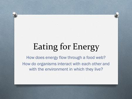 Eating for Energy How does energy flow through a food web? How do organisms interact with each other and with the environment in which they live?