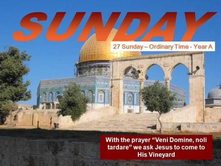 "With the prayer ""Veni Domine, noli tardare"" we ask Jesus to come to His Vineyard 27 Sunday – Ordinary Time - Year A."