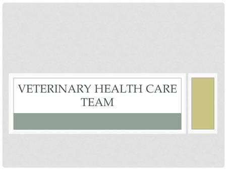 VETERINARY HEALTH CARE TEAM. Every veterinary hospital staff consists of a team of caring individuals, each contributing his or her unique abilities to.
