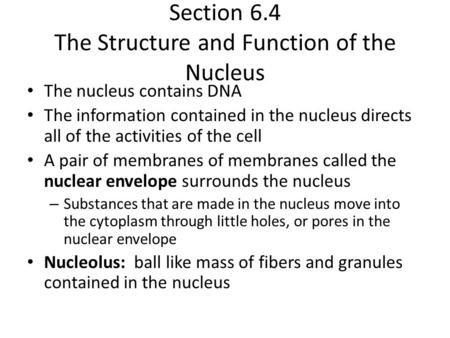 Section 6.4 The Structure and Function of the Nucleus The nucleus contains DNA The information contained in the nucleus directs all of the activities of.