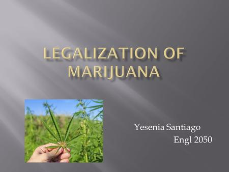 Yesenia Santiago Engl 2050.  Marijuana is of leaves, stems, seeds and chopped dried flowers of the plant called Cannabis Sativa.  Common names: grass,