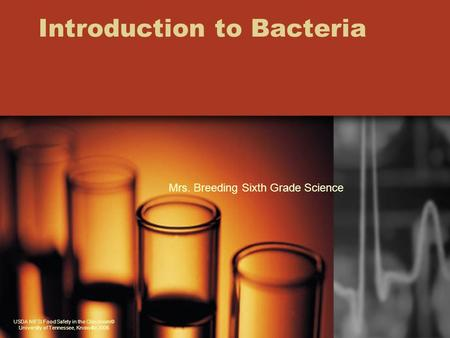 Introduction to Bacteria USDA NIFSI Food Safety in the Classroom© University of Tennessee, Knoxville 2006 Mrs. Breeding Sixth Grade Science.