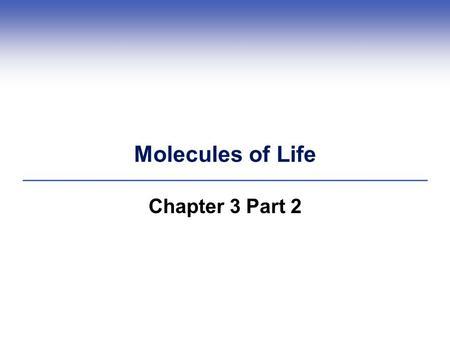chpt 2 biological molecules Biology 12 - lesson 3 - biological molecules 2 eg ribose (c 5 h 10 o 5), a pentose sugar, is found in ribonucleic acid (rna.