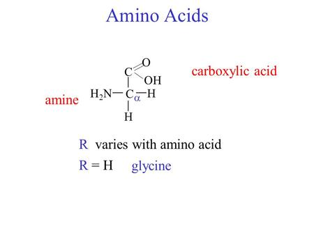 Amino Acids C H2NH2NH C O OH amine carboxylic acid  Rvaries with amino acid R = H glycine R H.