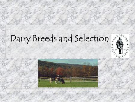 Dairy Breeds and Selection. Objectives: n Major Breeds of Dairy Cattle n Dairy Terms and Definitions n Parts of a Dairy Cow n Dairy Traits and Selection.