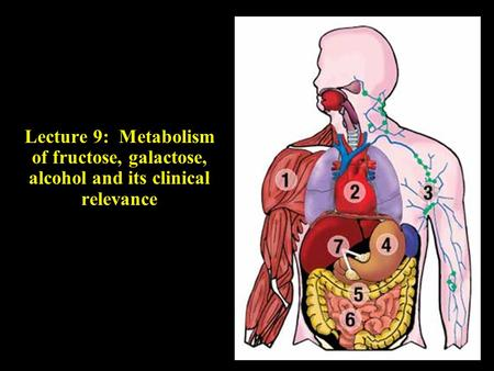 Objectives: · Metabolism of fructose · Metabolism of galactose · Pathway of alcohol metabolism · Explain the metabolic defects (fructosuria , hereditary.