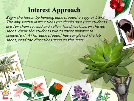 Interest Approach Begin the lesson by handing each student a copy of LS–A. The only verbal instructions you should give your students are for them to read.