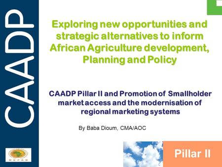 PARTNERSHIPS IN SUPPORT OF CAADP Exploring new opportunities and strategic alternatives to inform African Agriculture development, Planning and Policy.