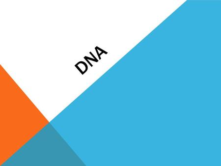 DNA. NUCLEOTIDES: Makes up DNA DNA is made of only 3 units: Sugar Phosphate Base.