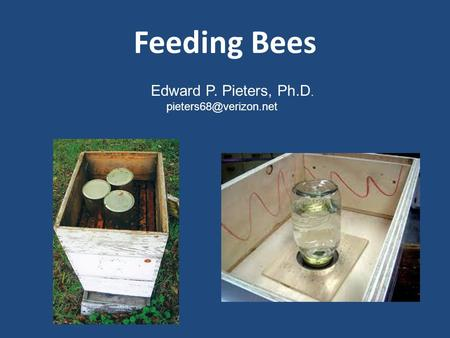 Feeding Bees Edward P. Pieters, Ph.D.