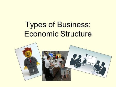 Types of Business: Economic Structure. Proprietorship: business with one owner who takes all the risks but gets all of the profit.