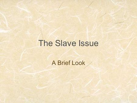 The Slave Issue A Brief Look. Key Ideas Prior to Civil War the South splits into (2) different groups. Positions in the social ladder depended on race.